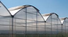 Wielonawowy tunel ogrodniczy S160G